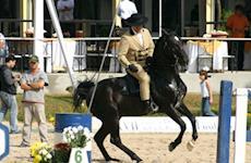 Ibiúna teve prova inovadora de Equitação de Trabalho