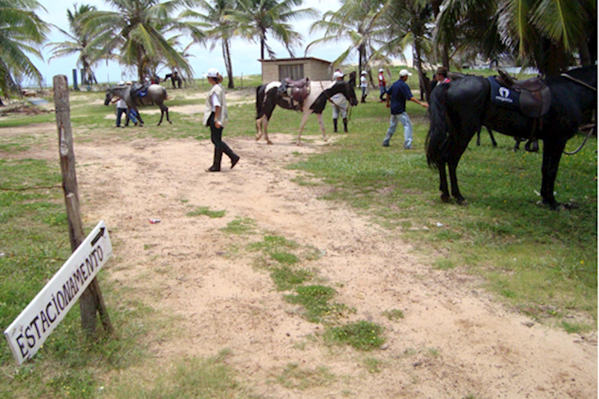 Tibau do Sul (RN) - Sela de Ouro
