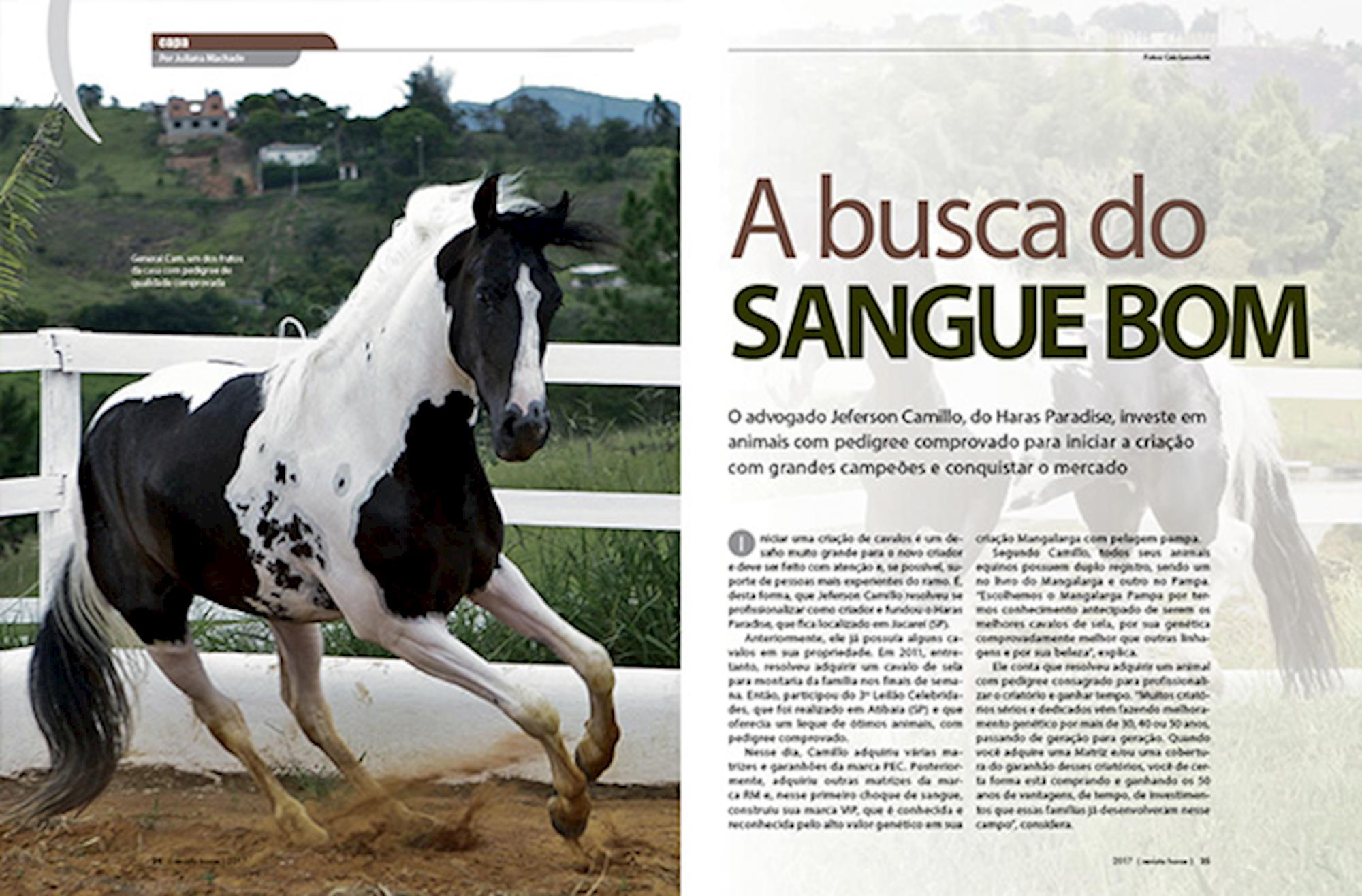 horse 95, edições,