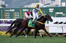 Assista à cobertura da Horse no GP Brasil