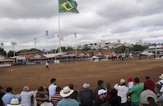 Nacional do Marchador: a maior festa do cavalo do Brasil