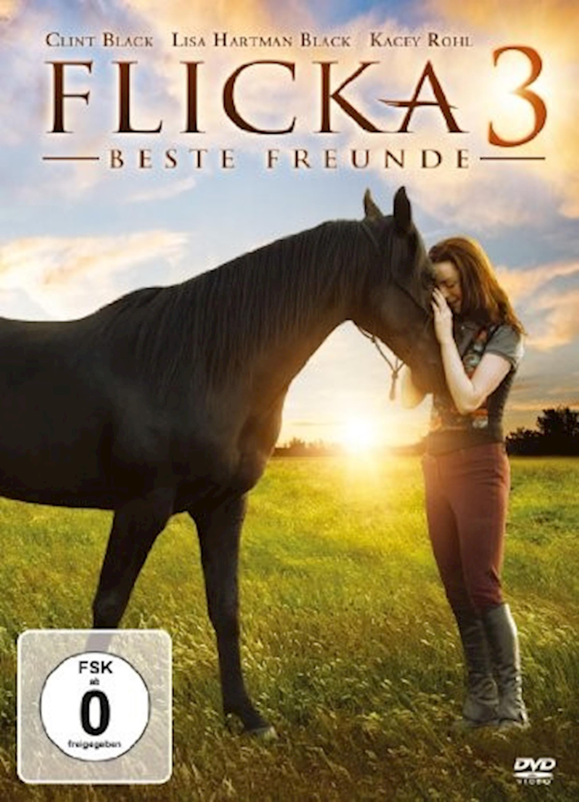 filmes de cavalos, dicas de filmes, Flicka 3,