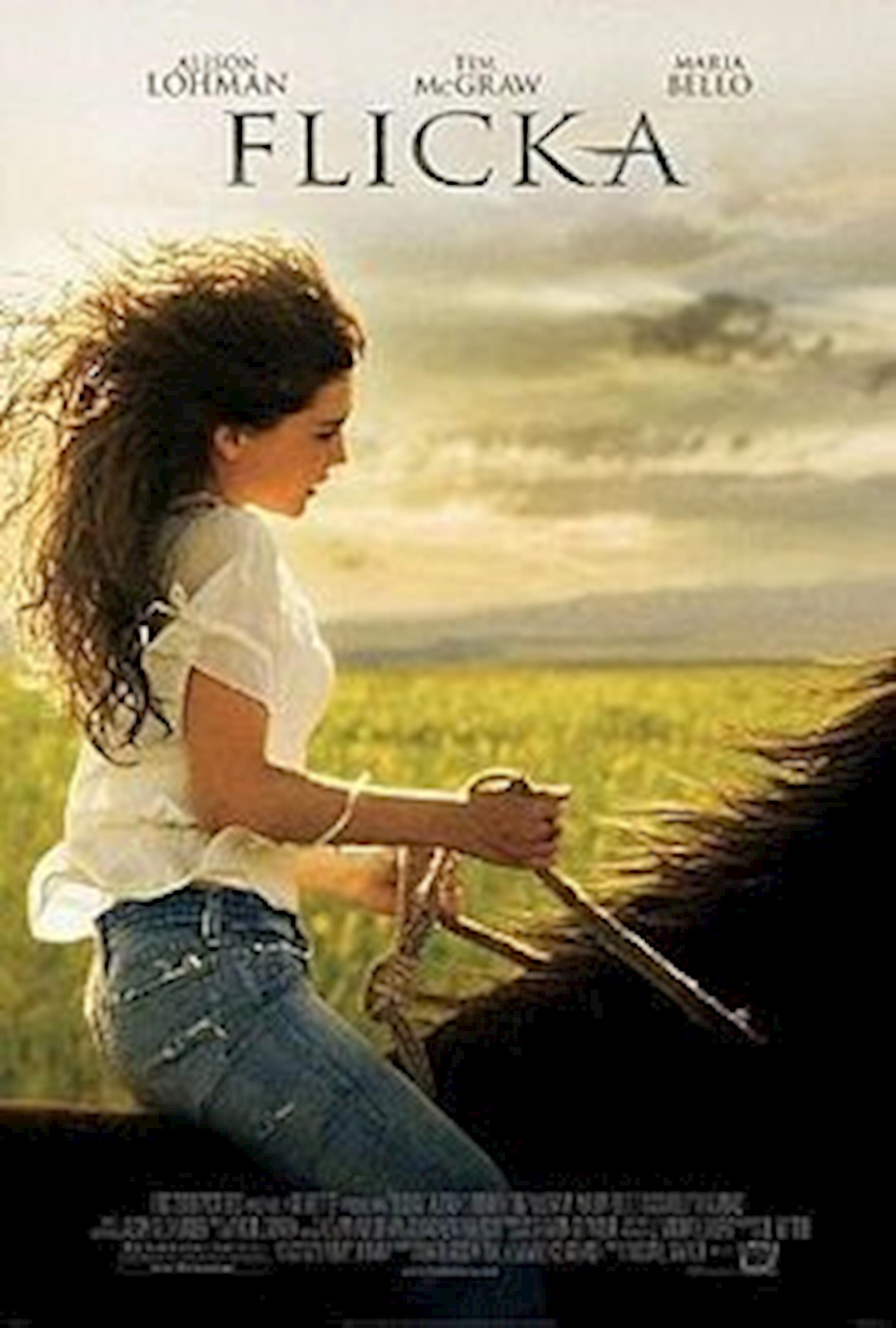 filmes de cavalos, dicas de filmes, Flicka,