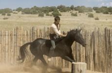 Godless, o novo western de gala