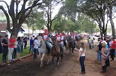 Mangalarga Marchador faz cavalgada histórica, mas fica fora do Guinness