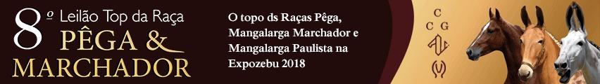 Leilão Top Marchador