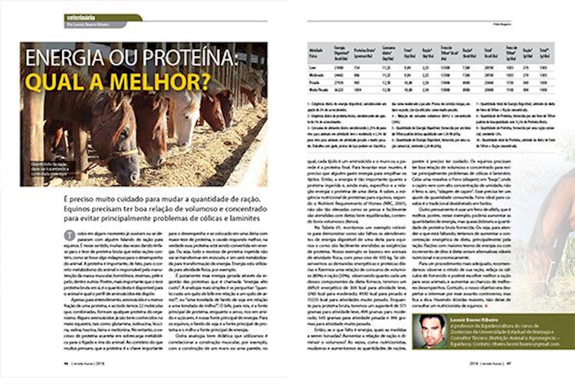 edição 106, Revista Horse, Nutrição animal, cavalos,