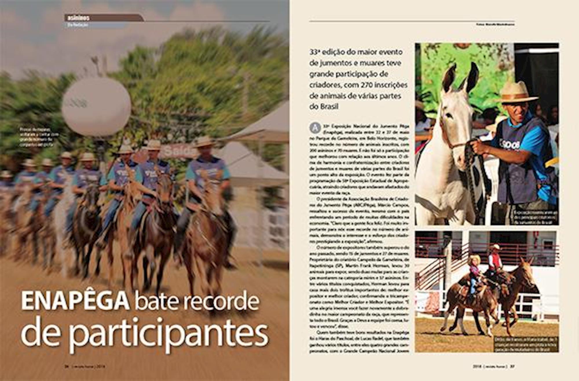 edição 106, Revista Horse, Muladeiros, Enapêga, jumentos, muares, burro, mula,