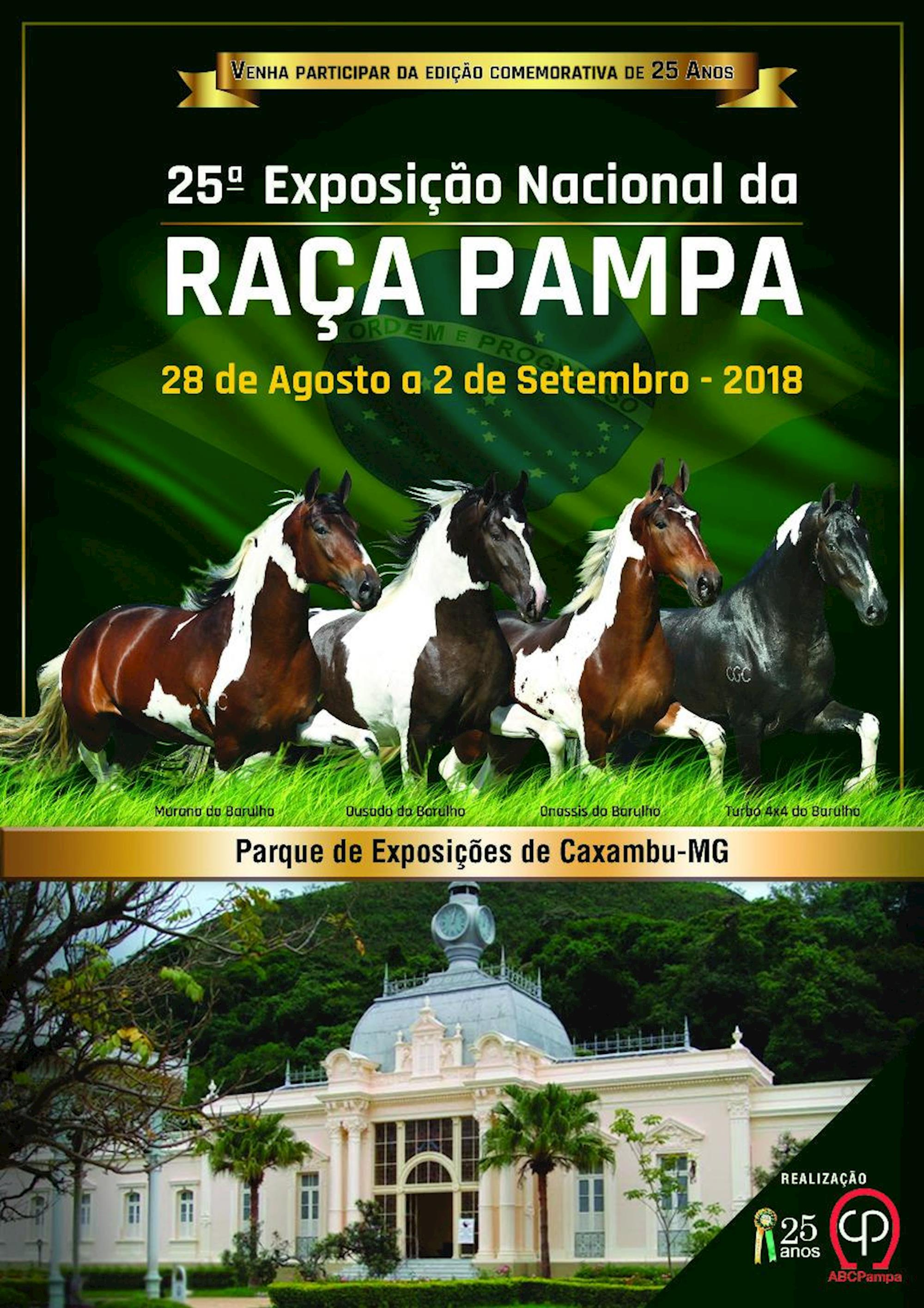 pampa, exposição, ABCCPampa, Nacional, Caxambu,
