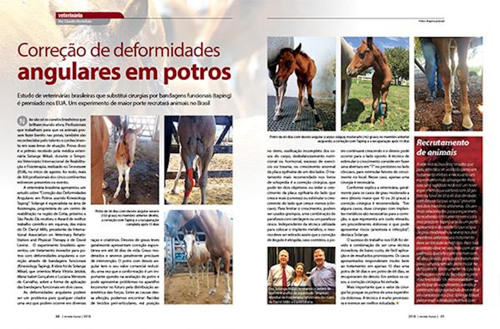 Aprumos de cavalos, Taping, Bandagem funcional, Solange Mikail, Revista Horse,