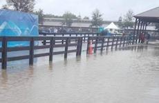 Chuvas alagam Centro Equestre