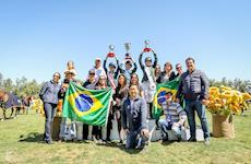 Brasil domina Sulamericano no Chile