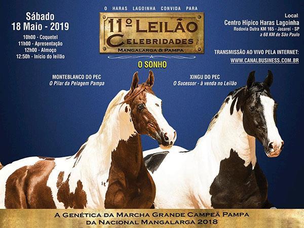 11 Leilao Celebridades