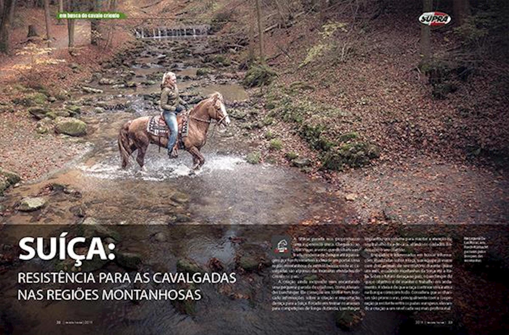 edição 117, Em Busca do Cavalo Crioulo, Fagner Almeida, Horse, Europa, Suiça,