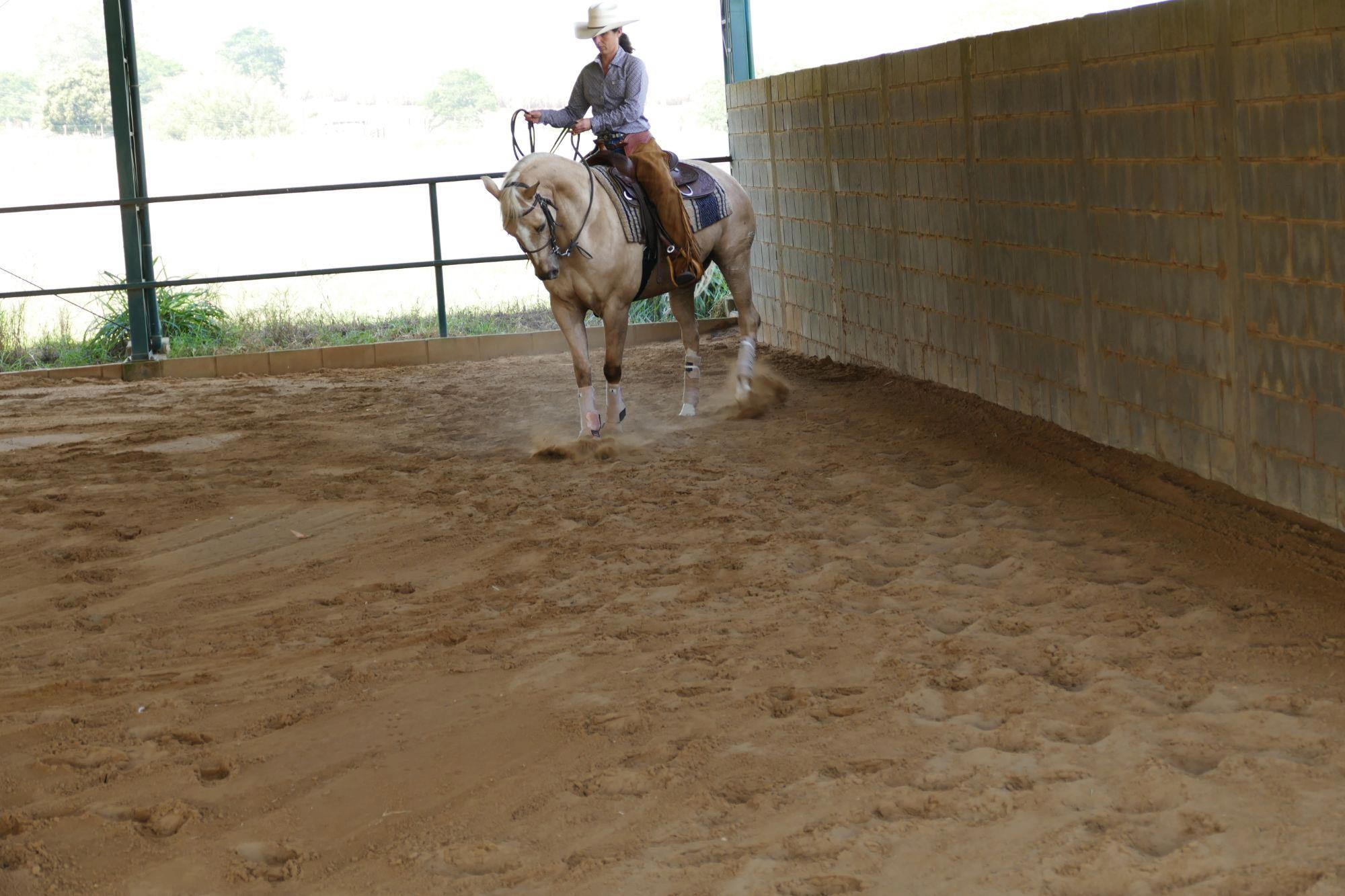 FOTO 3 - Renvers, Apoio cavalos,  treinamento,  cavalos,  Revista Horse, Eduardo Borba, Exercícios da escola acadêmica - Parte 4