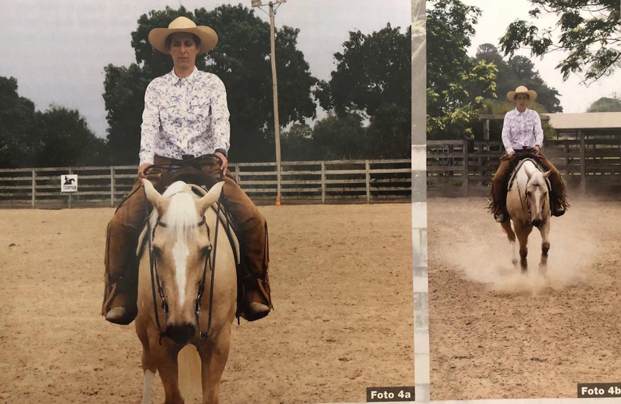 Dudi, Treinamento, cavalos, Doma, Horse,