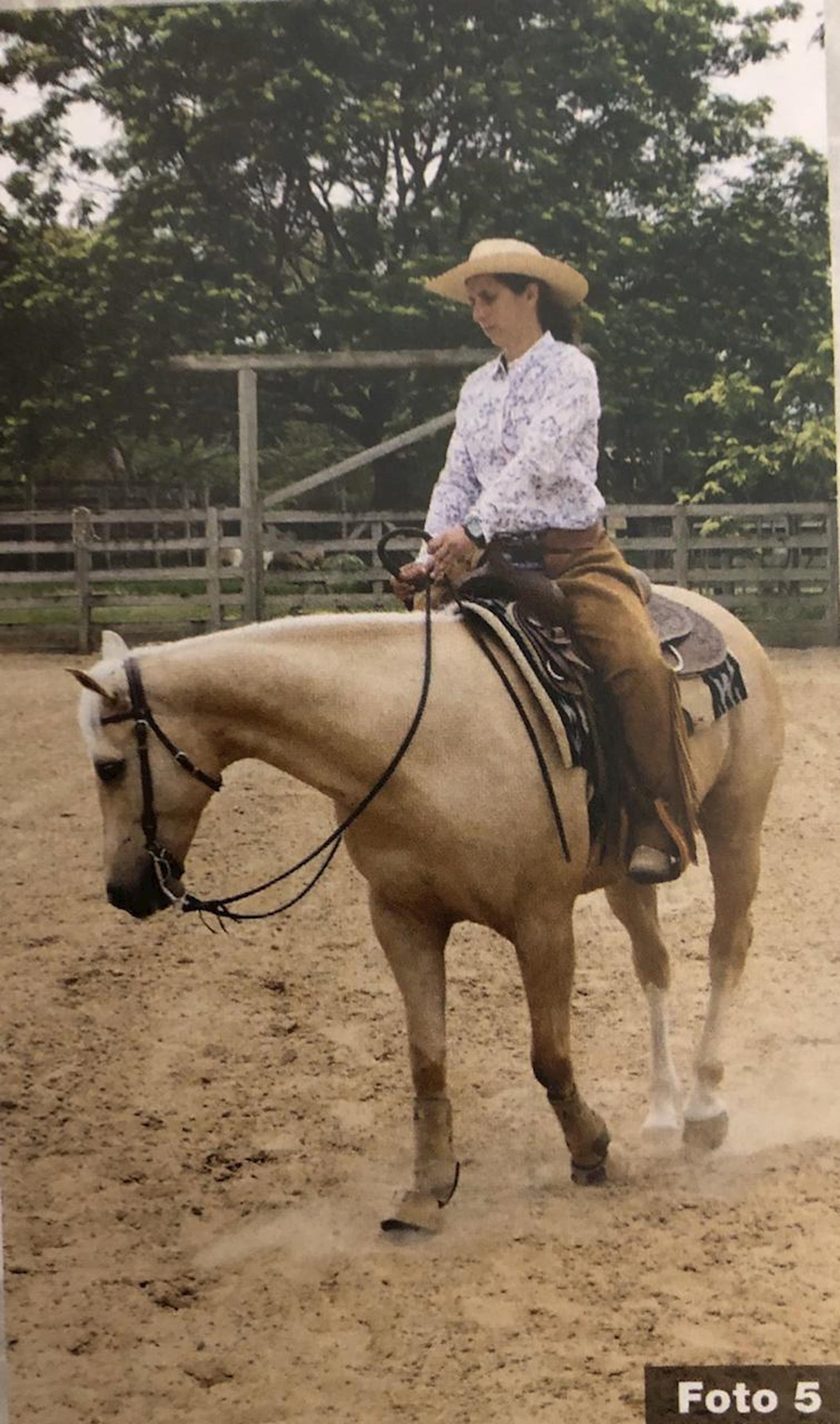 Treinamento, Dudi Ometto, Doma, Revista Horse,