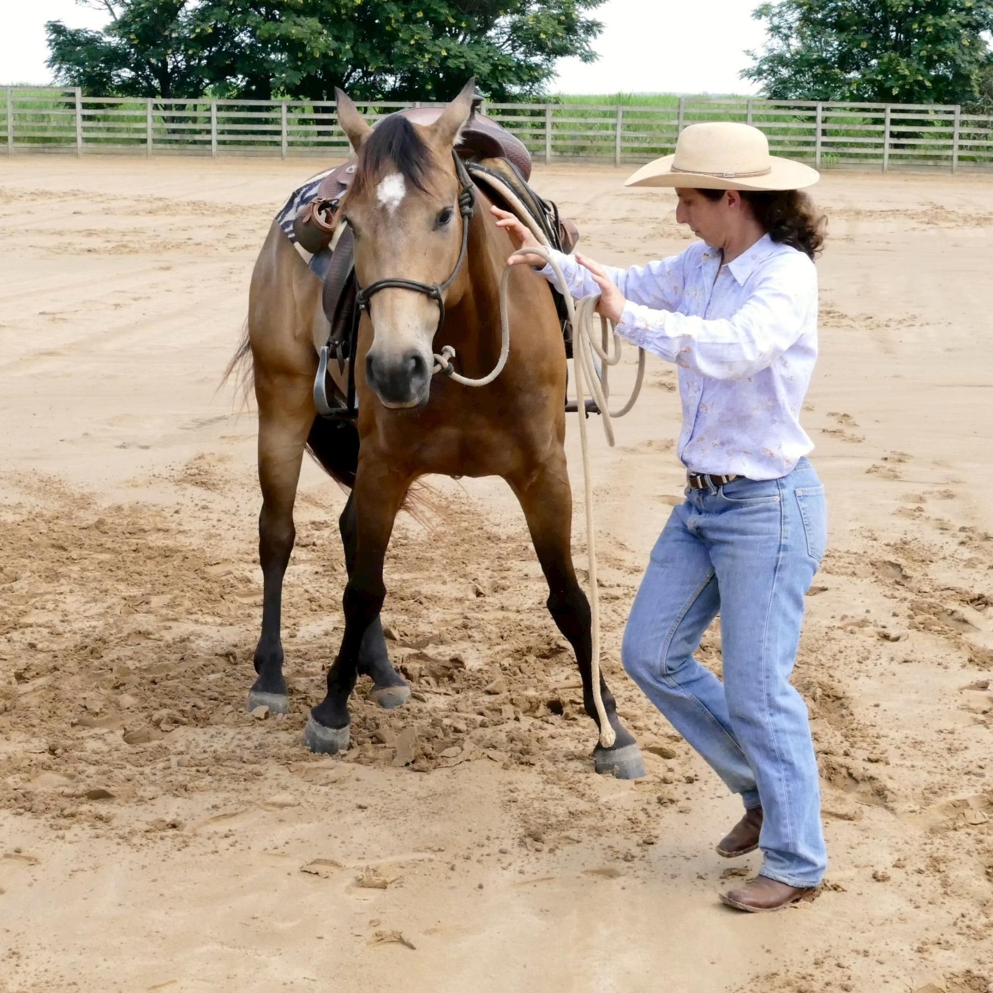 treinamento - Dudi Ometto, Horse 95, Rédeas, Eduardo Borba