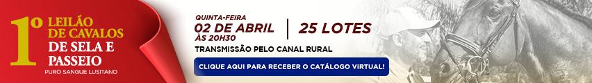Leilão Coudelaria Aguilar