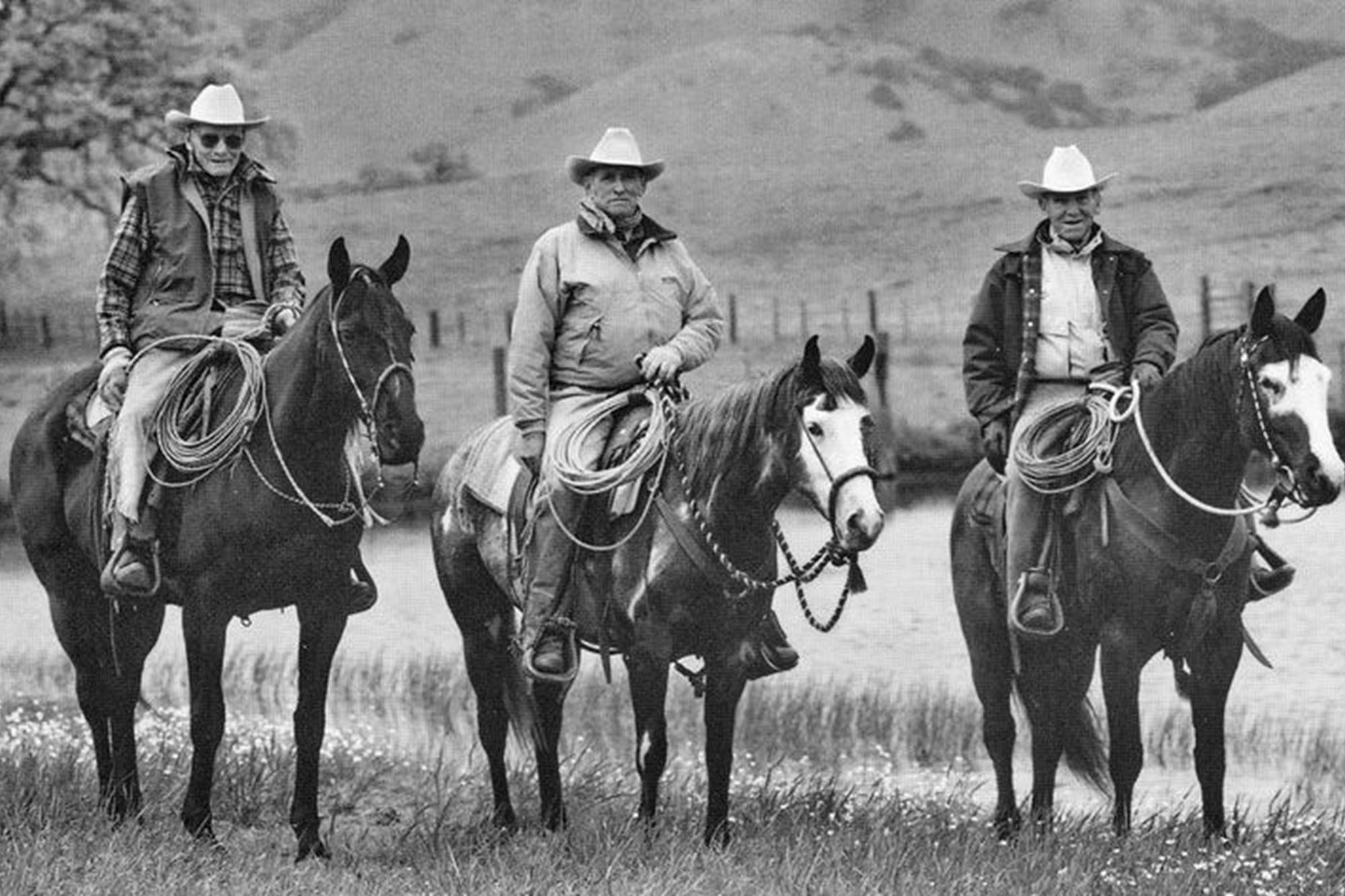 Os cowboys zen