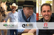 Primeiro programa, primeiro programa, debates equestres, 2020, imprensa