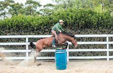 A nova geração do horsemanship no Brasil