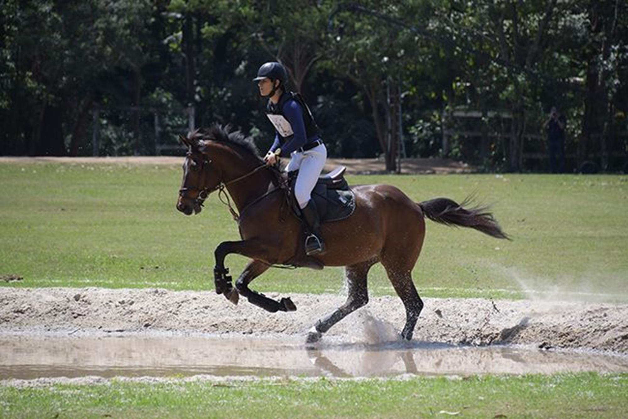 O jovem talento Mateus Oliveira com Artemis venceu na série 0.90 na classificação geral e categoria avançados, Duílio Andrade/Assessoria, O OURO DA CASA