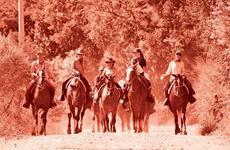 Primeiros-socorros nas cavalgadas