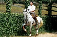 Varinha, uma ajuda à equitação