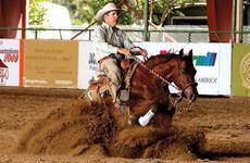 Os desafios de um HORSEMAN