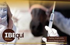 IBEqui pede inclusão de profissionais do cavalo nos grupos prioritários