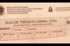 São Paulo adota e-GTA digital