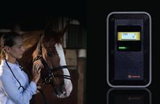 Aparelho inovador identifica infecção em cavalos em 10 minutos
