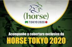 Horse Tokyo 2020 estreia Lives direto do Japão
