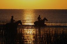 IBEqui propõe regulamentação e fomento do Turismo Equestre