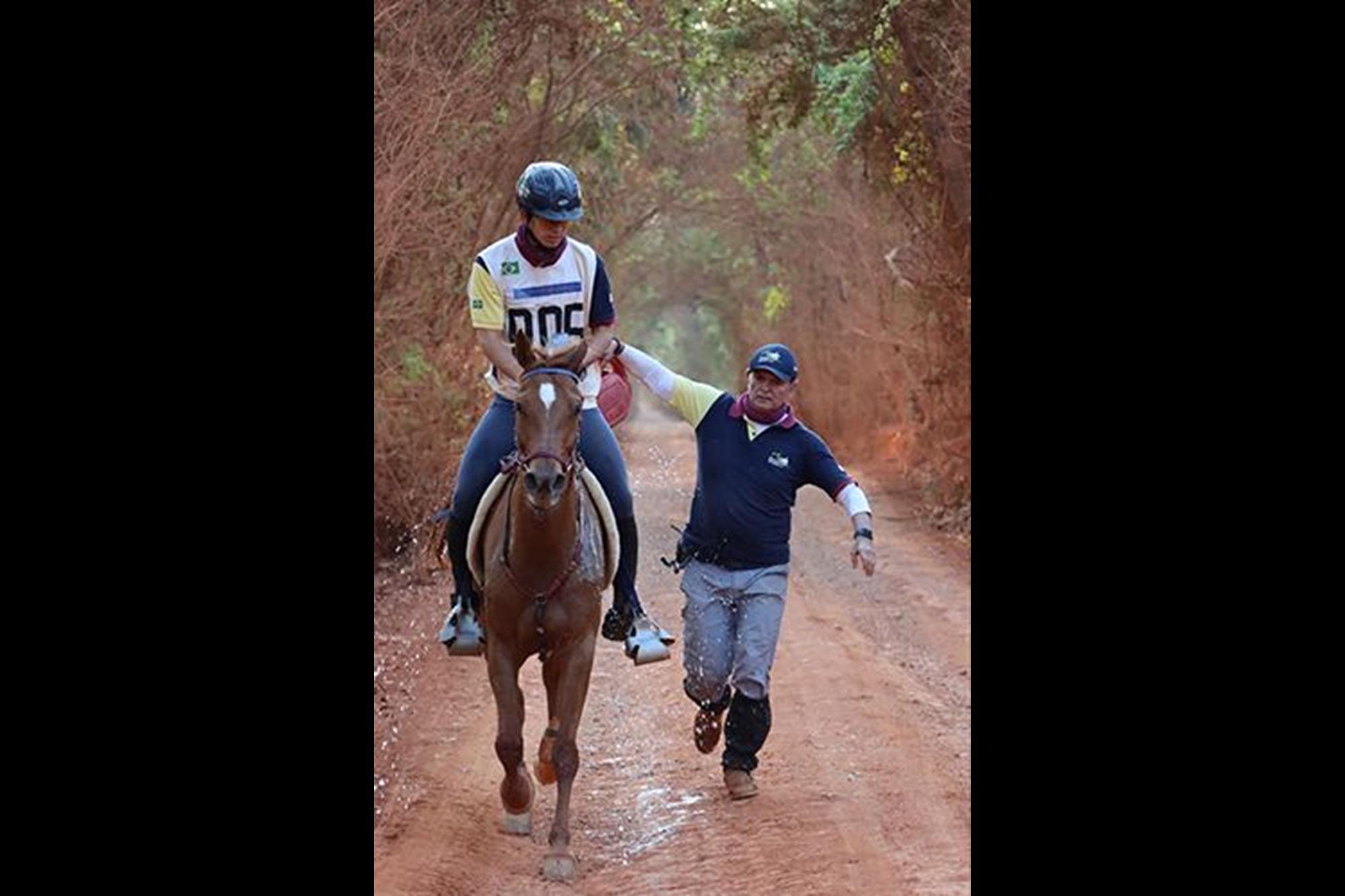 Mandalla Rach (Pavel Rach x Minuette Rach) é uma égua Puro Sangue Árabe de 11 anos,  de propriedade de Eduardo Xavier Barreto Júnior, Enduro,  cavalo Árabe,  campeonato brasileiro,  CBH,  Rodrigo Barreto, Divulgação, Rodrigo Barreto é o campeão brasi